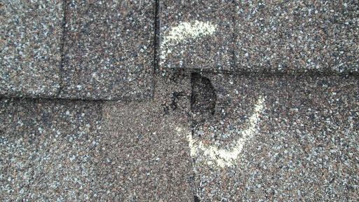 maintenance of roof